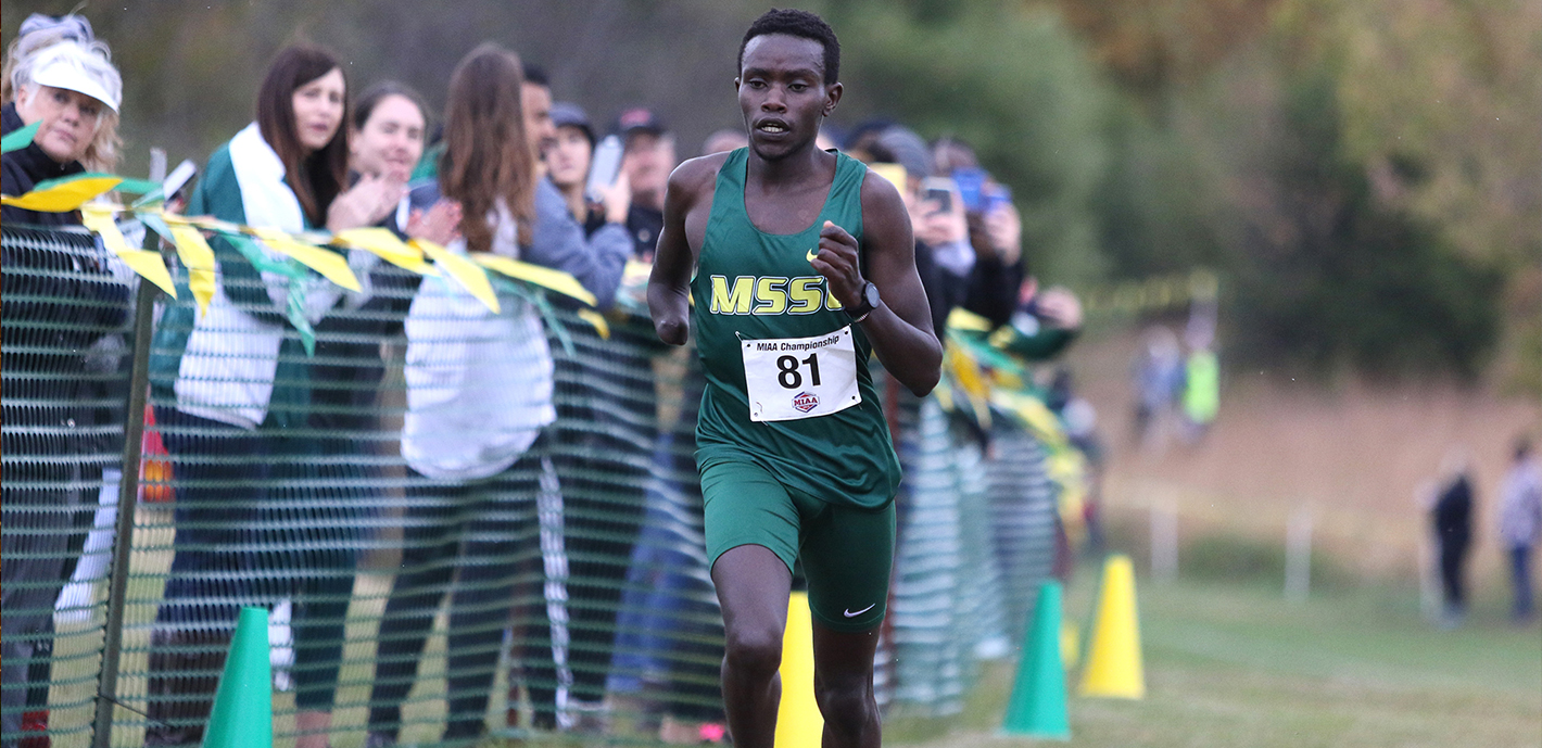 Cross Country Teams Successful at MIAA, NCAA Championships